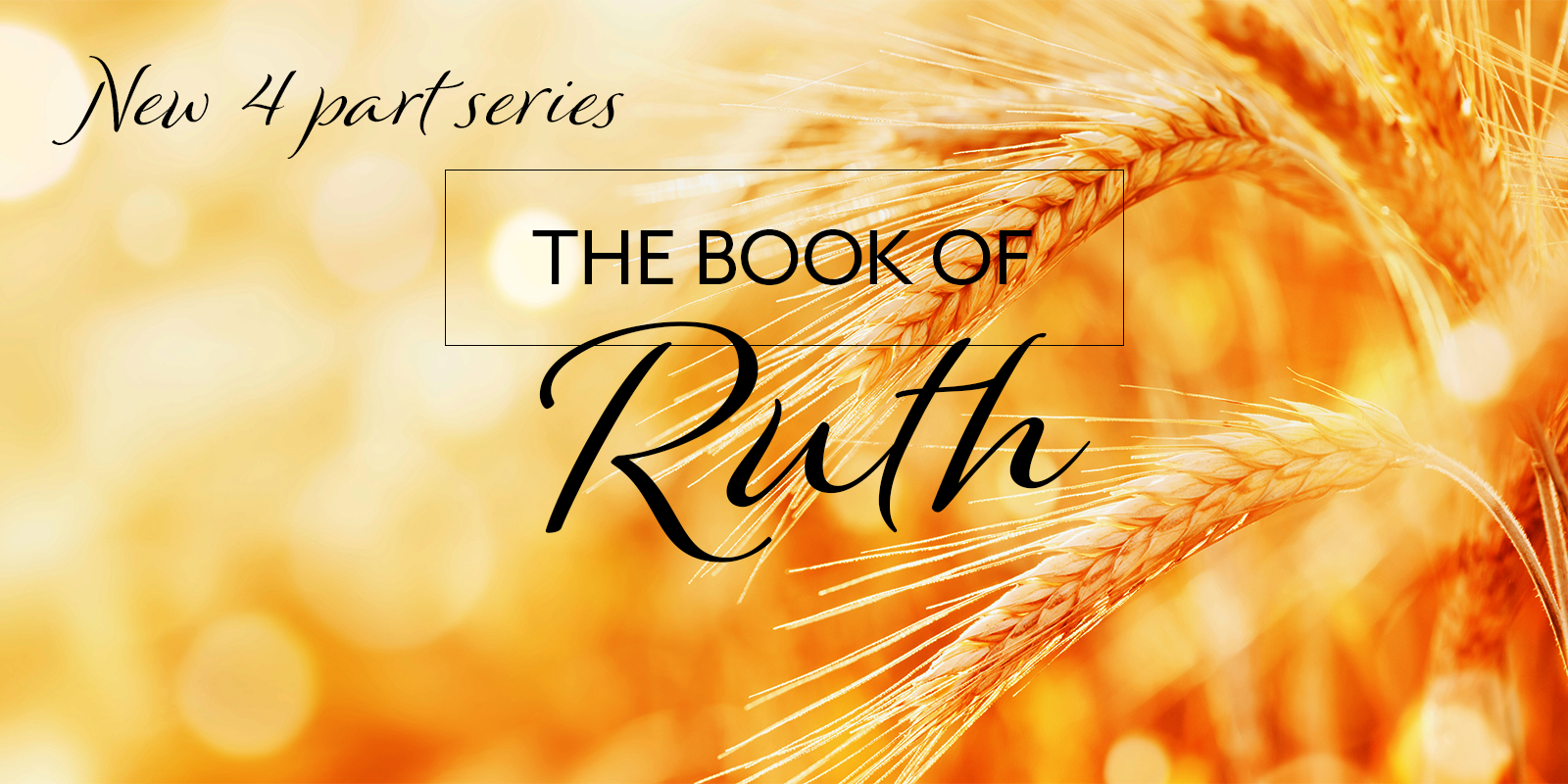 All things for good - Ruth 1 v 1-22 Image