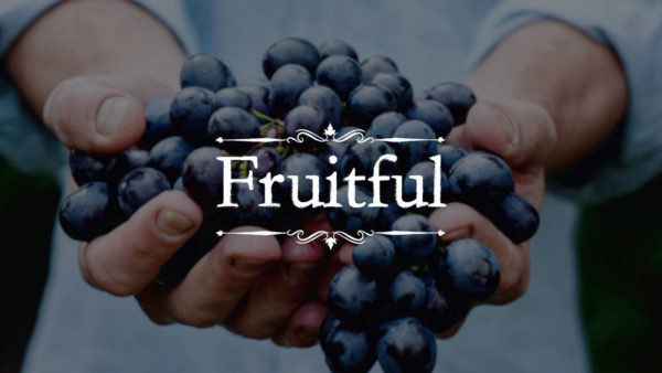 Fruitful - Pt 4 - Prayer - John 15:5-17